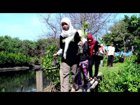 #Hijaukan Hutan Mangrove di Pesisir Surabaya