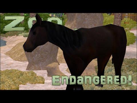 Endangered! Arabian Horses!! - Episode #59