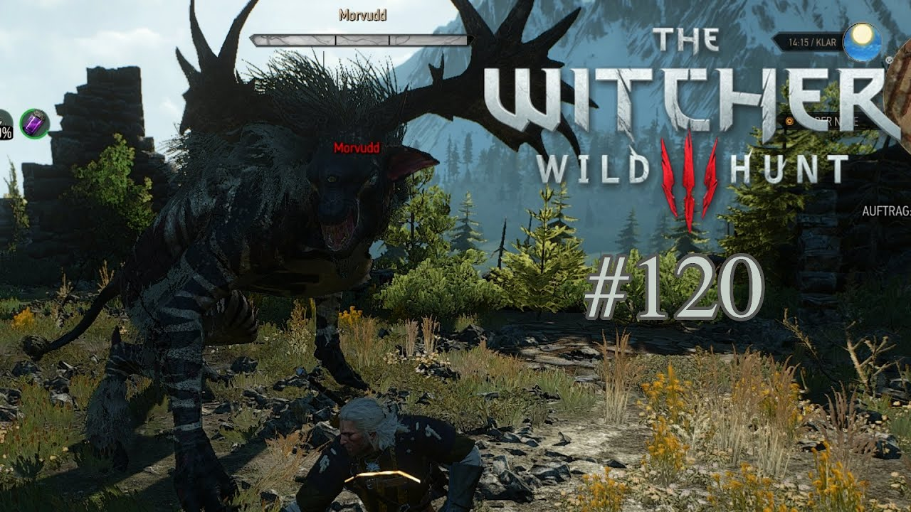 Witcher 3 Probleme