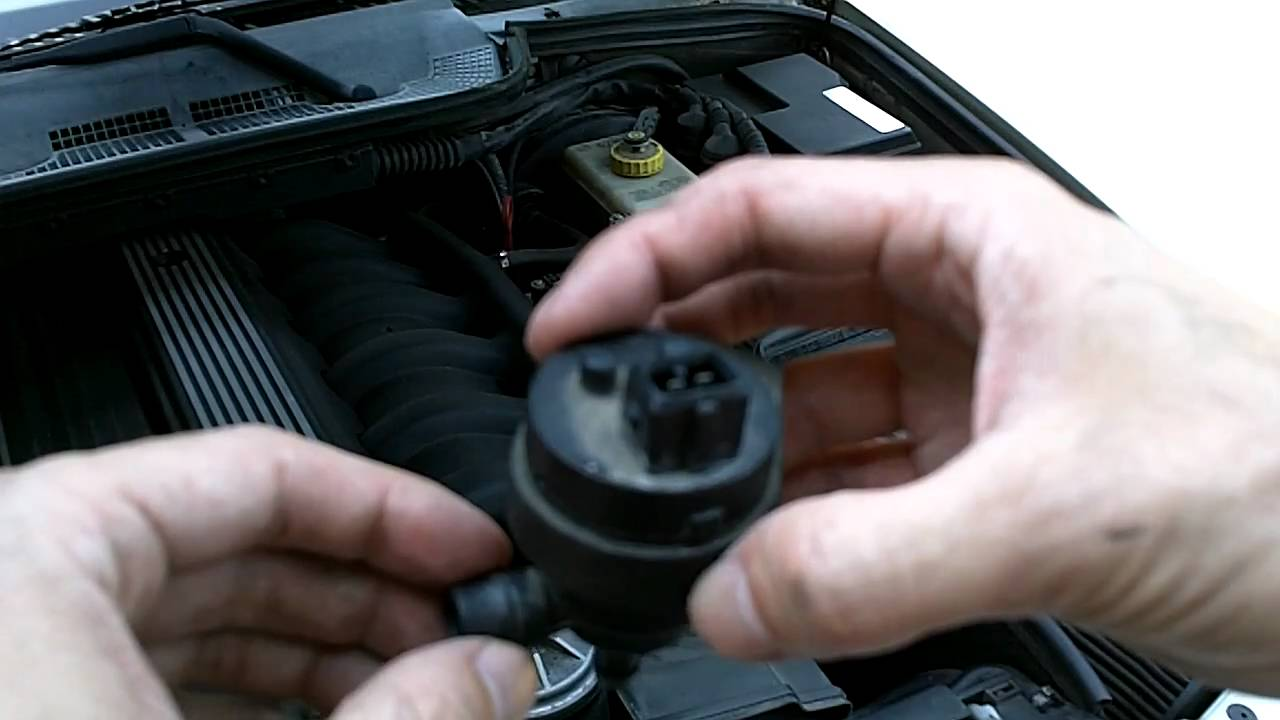 Bmw E36 M3 Purge Valve Installation Youtube