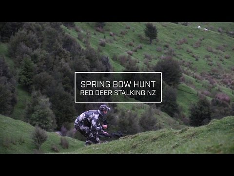 SPRING BOW HUNT - RED DEER NEW ZEALAND