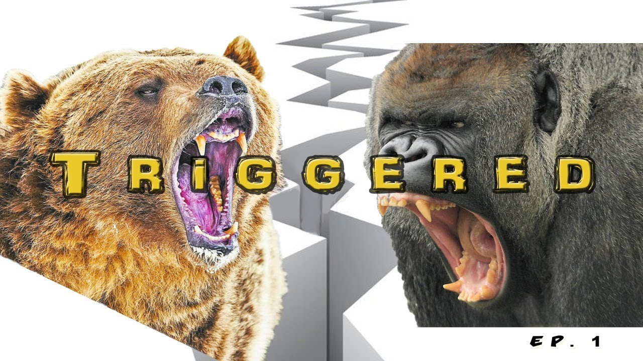 Bear vs Gorilla: S1, Ep1 | Triggered