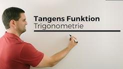 Tangens Funktion mit ner Leuchte basteln, Trigonometrie | Mathe by Daniel Jung