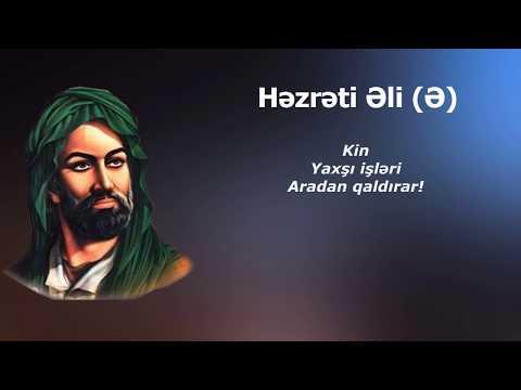 Hz. Əli (Ə) - Tarixə damğa vuran sözləri