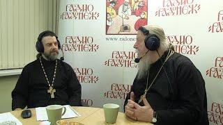 Радио «Радонеж». Протоиерей Димитрий Смирнов. Видеозапись прямого эфира от 2016.11.05
