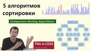 5 алгоритмов сортировки данных с визуализацией