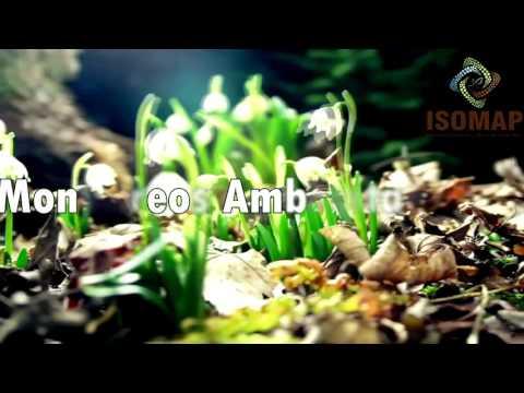 Consultora Ambiental ISOMAP Presentación from YouTube · Duration:  53 seconds