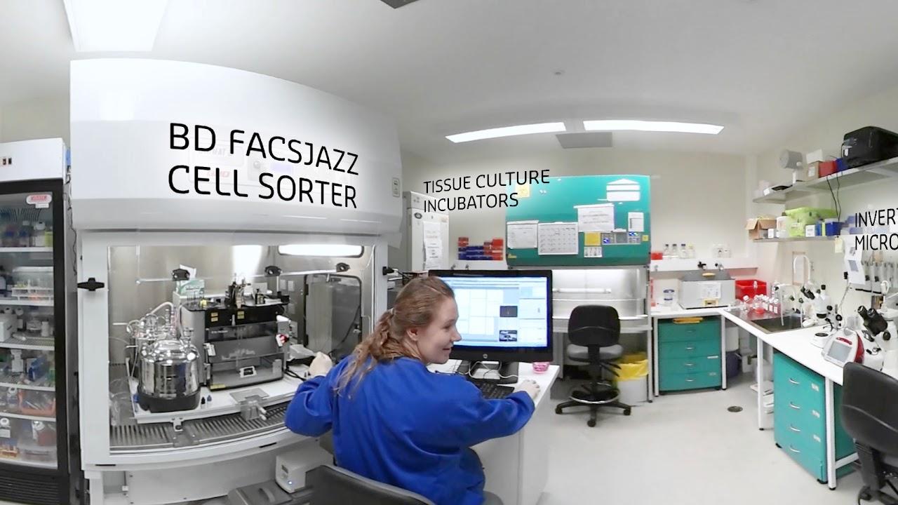 CHIRI Tissue Culture Laboratory 360 virtual experience YouTube