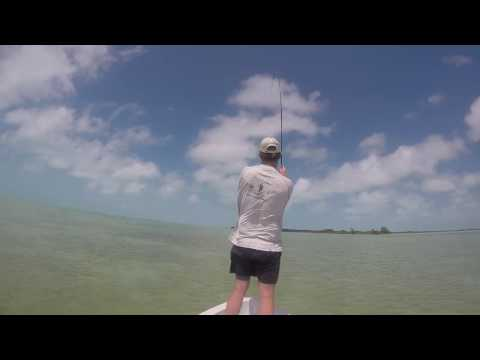 Fly Fishing Xcalak