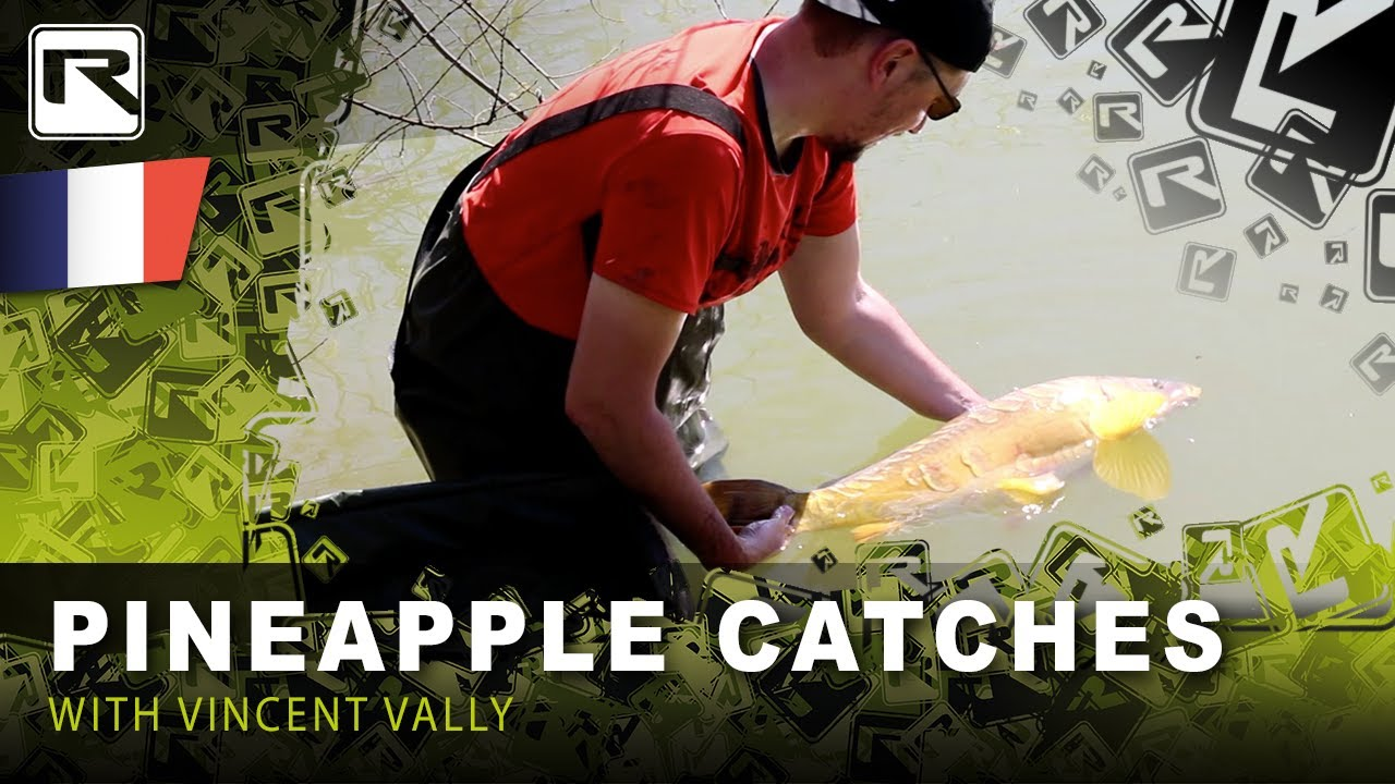 Carp Boilies 1kg Pineapple carp bait fishing