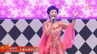 가수심정아/눈물속에피는꽃/작사작곡박수미/시민과함께하는가을음악회