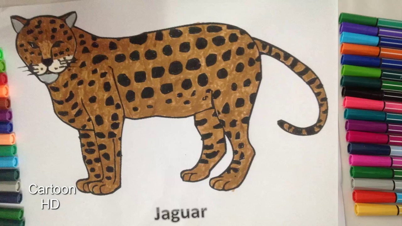 Jaguar Coloring Pages For Kids