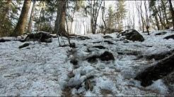 Liukkaat on polut metsässä- Nokia Kyöpelinvuori Koskenmäki