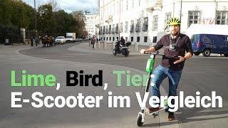 E-Scooter im Test: Die Roller von Lime, Bird und Tier