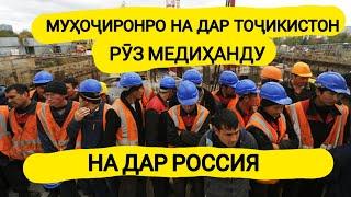 Мухочиронро на дар Тоҷикистон рӯз медиҳанду на дар Руссия