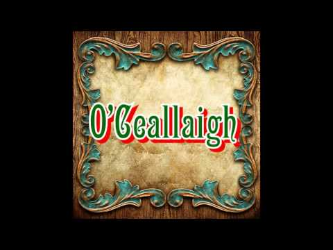 Traditional Irish Music - O'Ceallaigh - Live