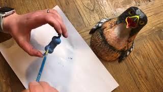 Little Bird Doorbell