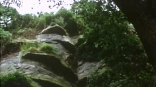 (27) Les Brigades du Tigre - Le vampire des Carpates