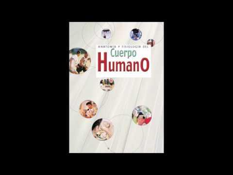 ANATOMÍA Y FISIOLOGÍA DEL CUERPO HUMANO (LIBRO PDF). - YouTube