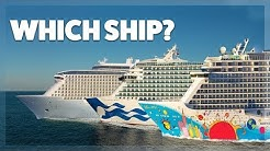 Which cruise ship is best?