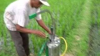 cara aplikasi pupuk Cair Biofarm