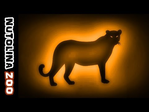 Verso leopardo / Leopard geräusch / Leopard roar sound ...