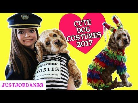 CUTE DOG COSTUMES FOR HALLOWEEN 2017 / JustJordan33