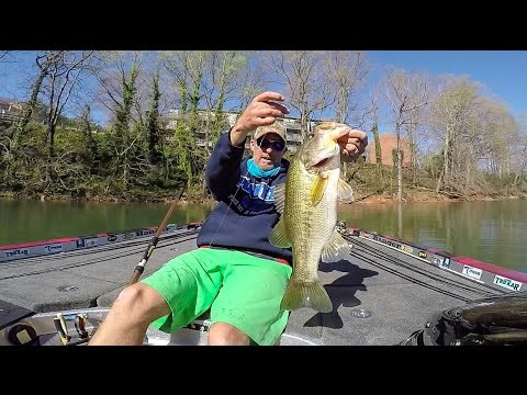 Wesley Strader Finesse Fishing on Lake Hartwell