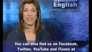 VOA learning English 2015 Part 4-Agriculture Report-Luyện Nghe Tiếng Anh Qua Tin Tức VOA