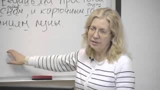 Русский язык. Знаки препинания при однородных членах предложения