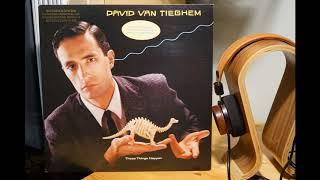 David Van Tieghem - These Things Happen (Vinyl)