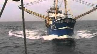 Fishing Vessel hits large Sailing Vessel in Good Visibility  20/8/2010 thumbnail