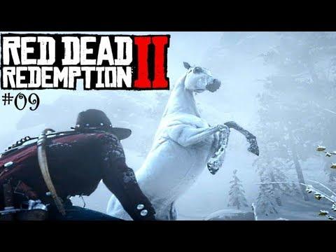 Red Dead Redemption 2 Weißer Araber