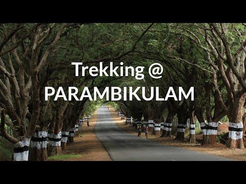 Ecotourism in Parambikulam