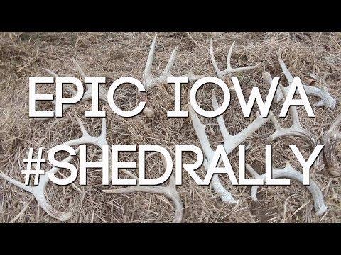 EPIC IOWA #SHEDRALLY - 2018 IOWA SHED HUNTING - #WiredToHuntWeekly 38