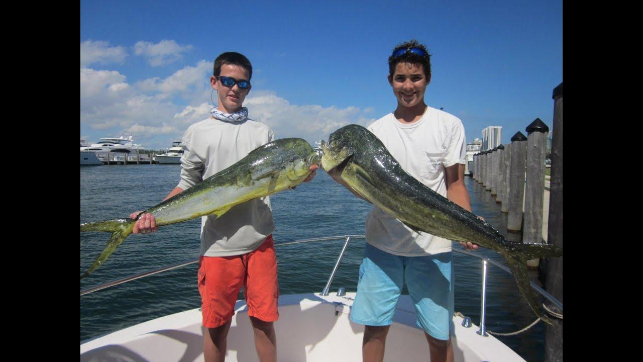 mahi mahi dolphin fishing miami fl youtube