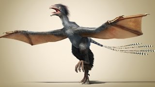 A New Dinosaur: Flying Without Feathers