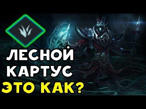 видео: ЛЕСНОЙ КАРТУС - ЭТО РЕАЛЬНО! | Лига Легенд