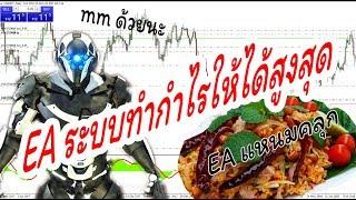 EA ระบบทำกำไรให้ได้สูงสุด รันแบบอาบิทราจได้ ออโต้ 100%
