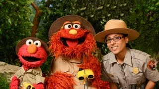 Sesame Street: Gateway Families