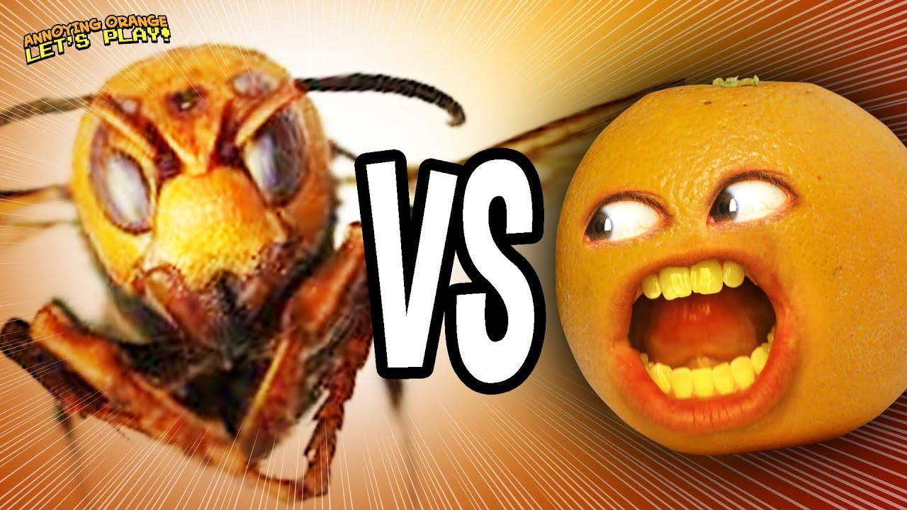 AO vs Murder Hornet!!!