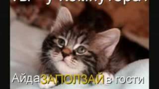 Приколы С Животными Онлайн.