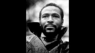 Watch Marvin Gaye Why Did I Choose You video