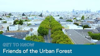 Friends of the Urban Forest Plants Tens of Thousands of Trees in San Francisco