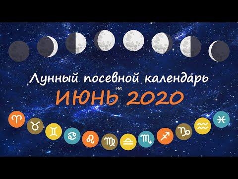 [Июнь 2020] Лунный посевной календарь огородника-садовода | Флористикс Инфо