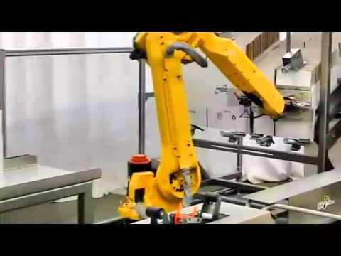 Robotic case erector cell vertical bos positioning