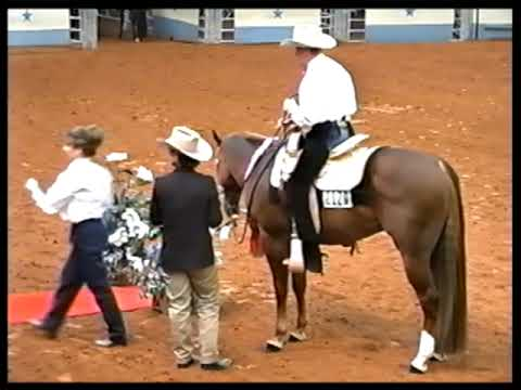 Ziprageous AQHA World Champion