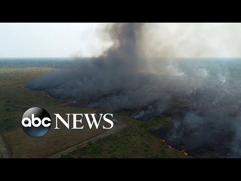 Amazon fires create respiratory issues for people of Brazil l ABC News Mp3