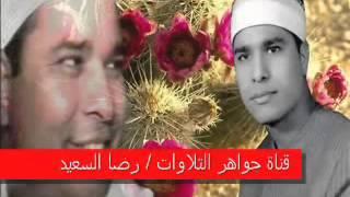 الحاقة الشيخ محمد الليثى رحمه الله