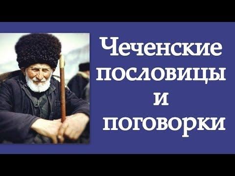 Чеченские пословицы и поговорки
